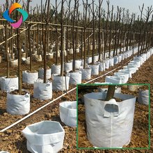 Eco friendly non woven garden felt tree grow bags with handles