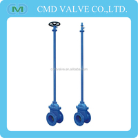 Flange Type Long Stem Gate Valve