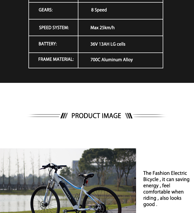 Top Quality China 36v 250w 700C 8 Speed Long Range Aluminum Alloy Adult Mountain Bicycle Mtb Electric Bike
