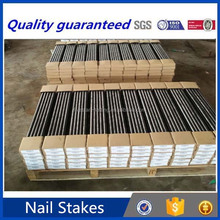 construction & real estate steel nail form stakes , concrete nail stakes flat from china holder
