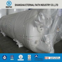 Global Requtation LNG Gas Storage Tank Container