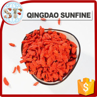 The red sweet Ningxia goji berry in high quality