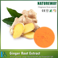 Low price natural black ginger root extract,ginger extract powder