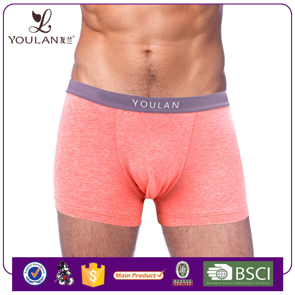 custom made embroidered logo factory direct sell image sexy men's boxer brief underwear