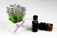 3ml mini small essential oil bottle with plasctic lip and cap