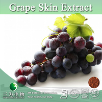 Health Food Grape Skin Extract Resveratrol 5%,Vitis vinifera L. P.E.