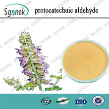 cure hypertension salvia extract / Red sage Root p.e Protocatechuic aldehyde
