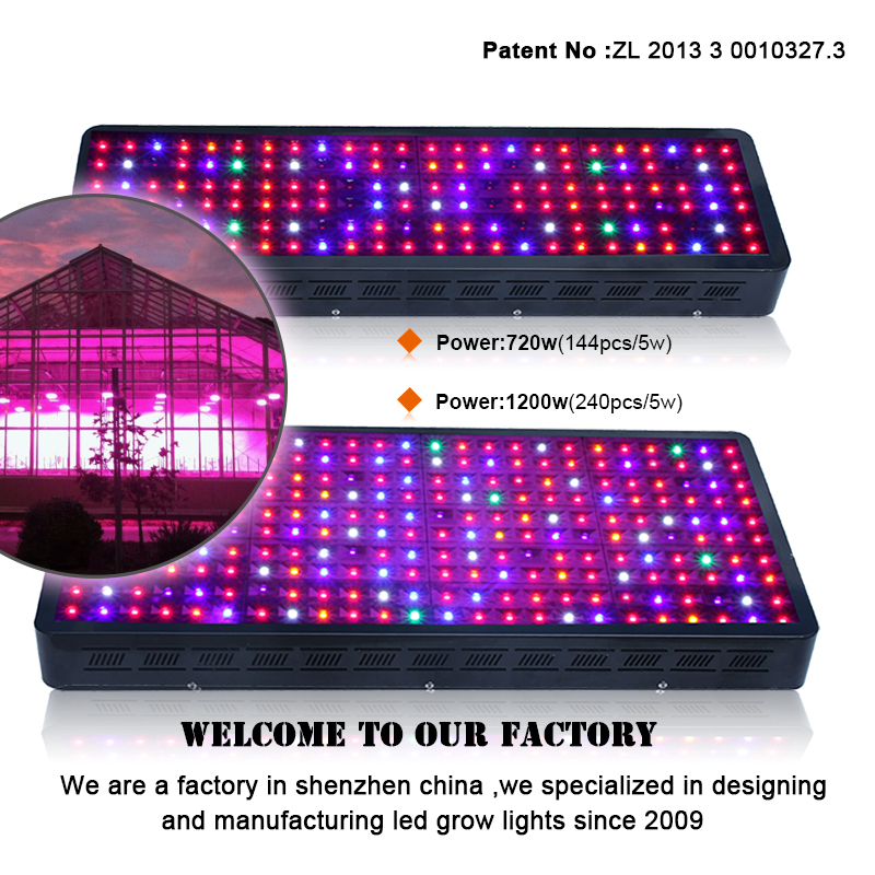 1200 watt grow hidroponic greenhouse advanced platinum series led grow light