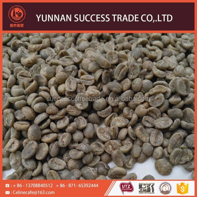 Welcome wholesales high quality quality green arabica coffee bean