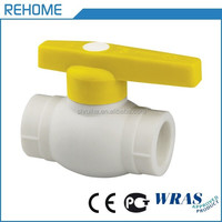 REHOME PPR BALL CHECK VALVE