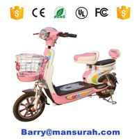 Foldable Cheap 350W 2 Wheel Electric Bike/Electric Bicycle with Lithium Battery-- YXEB8501XS
