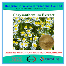 100% Pure Chrysanthemum Extract With Kosher Halal ISO22000 Certificate