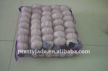2013 Hot sale Chinese Fresh Garlic