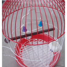 China Alibaba Iron Wire Bird Cages