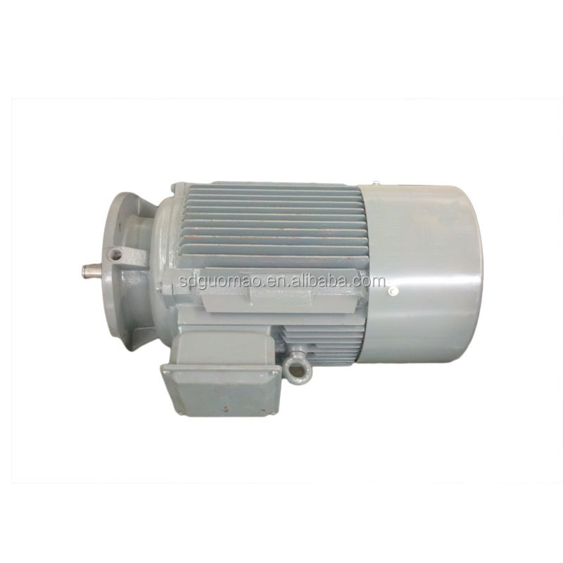 Three phase ac permanent magnet synchronous motor