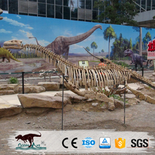 OA5170 Resin life size dinsaur skeleton