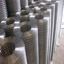 1/4'' 0.7mm electro galvanized welded wire mesh for Chickens, Rabbits and Other Small Animal Pens