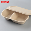 biodegradable paper pulp container,eco-friendly sugarcane paper pulp food container
