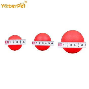 Indestrutível Durável Chewers Pet Dog Toy Dog Training Ball