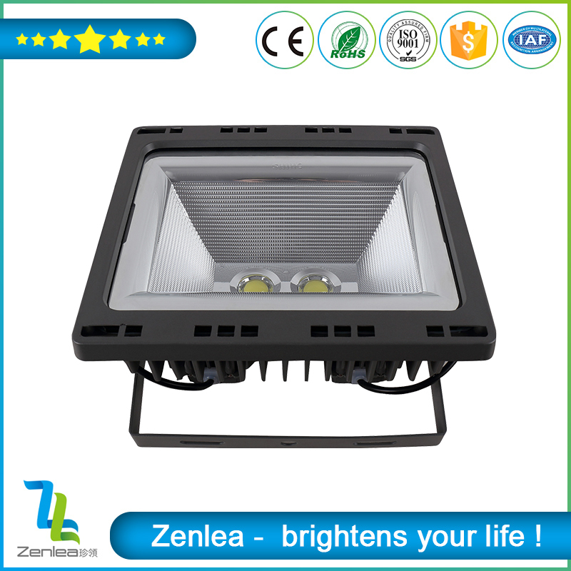 Aluminum low voltage outdoor led flood light 100w