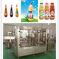 Food And Beverage Machinery Apple Juice