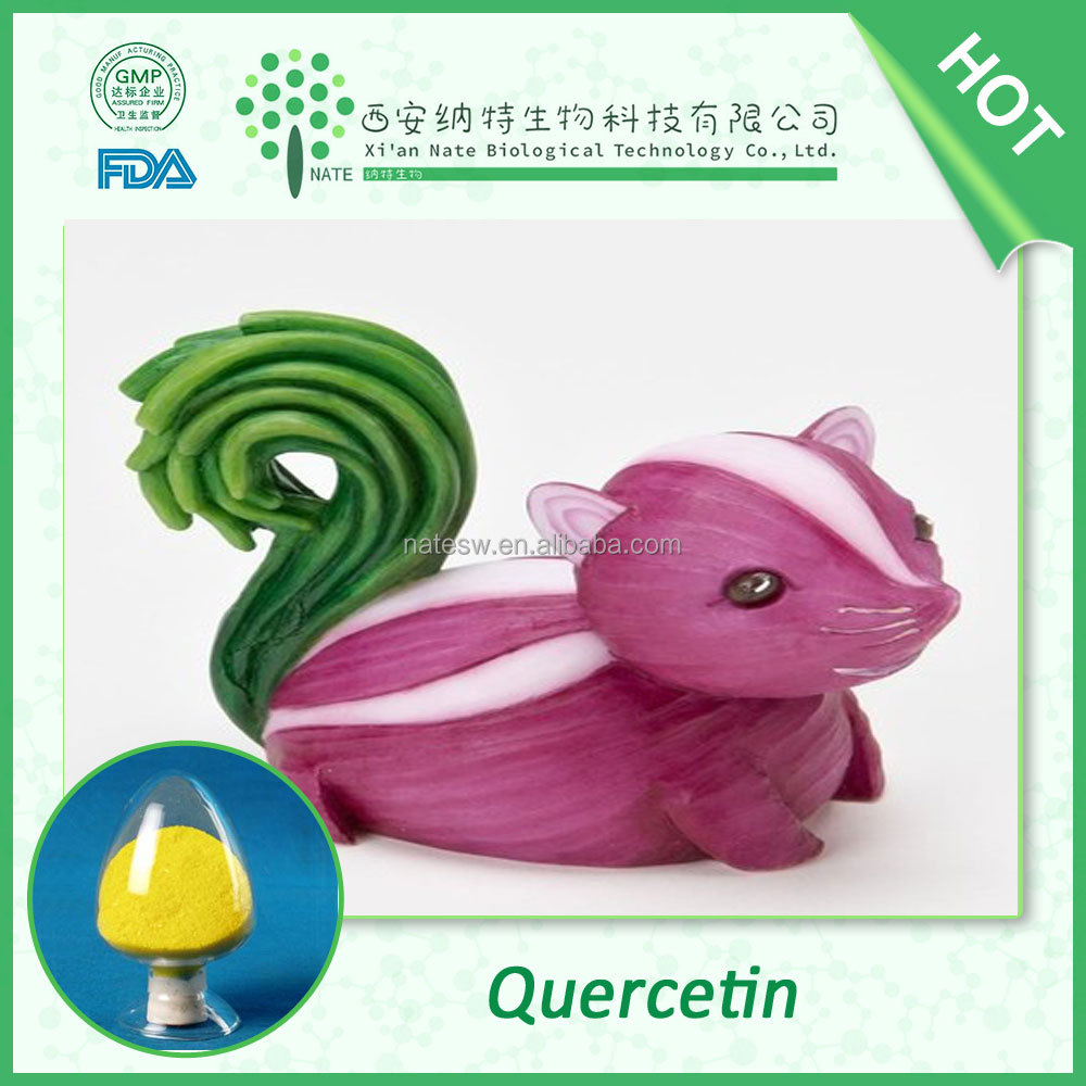 Herbal Extract High purity Onion Extract 95% Quercetin powder