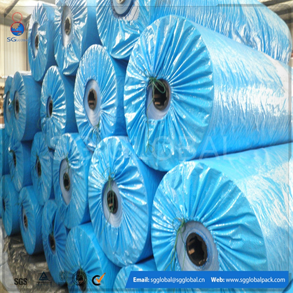 China fabric blue color pe coated tarpaulin