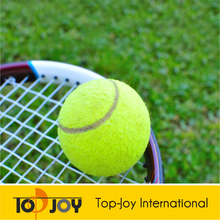 TOP JOY Wear-resistant Basketball Tennis Court Artificial Grass