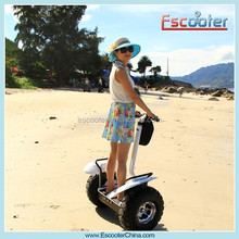 2015 New Magic Wheel For Sale Standup Electric Scooter