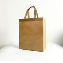 High Quality Good Price Colorful Folding Polypropylene Non-Woven Shopping Bags Wholesale In China