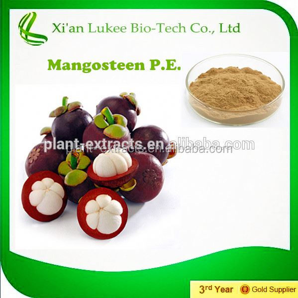 best price natural manggis fruit extract,mangosteen fruit peel extract powder,xango mangosteen juice powder