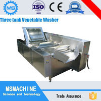 Industrial ozone vegetable washer