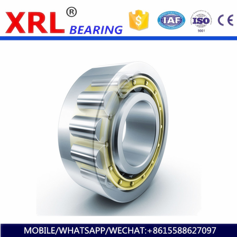 new brand oem hot sale deep groove ball bearing 6233