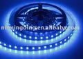 SMD 3528 led strip (60 pieces per meter)
