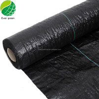 Best Selling Product PP Agricultural Plastic Weed Control Mat/Ground Cover Net