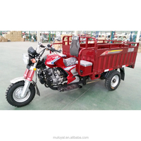 China tipper trucks for sale in ghana/3 wheel motorcycle malaysia/motorized tricycle