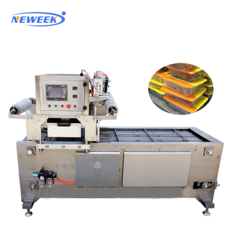 NEWEEK production line plastic case tray packing vacuum sealing machine