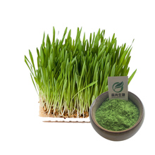 Wheat grass juice powder organic