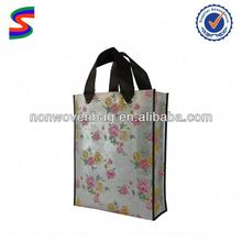 2010 Non Woven Shopping Bag Non Woven Disposable Carry Bag