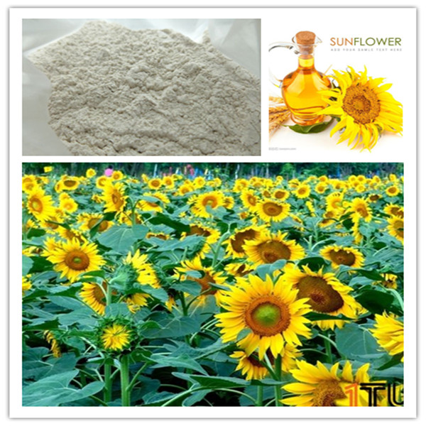 more competitive price acid bleaching earth clay purify oil for sunflower oils