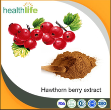 Free sample natural hawthorn berry extract