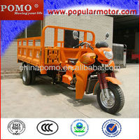 2013 Chinese New Selling Popular Petrol Cargo Cheap 250CC Wholesale Adult Tricycles