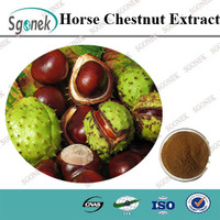 100% Pure Natural Horse Chestnut Extract