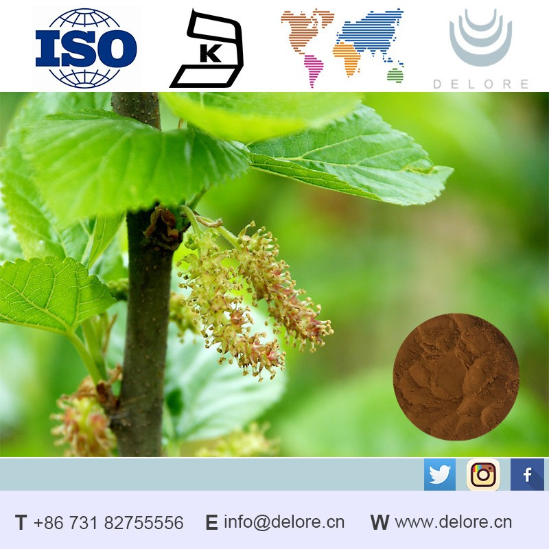 100% natural Mulberry Leaf extract/halal kosher iso qs cert/Blood sugar control/1% DNJ