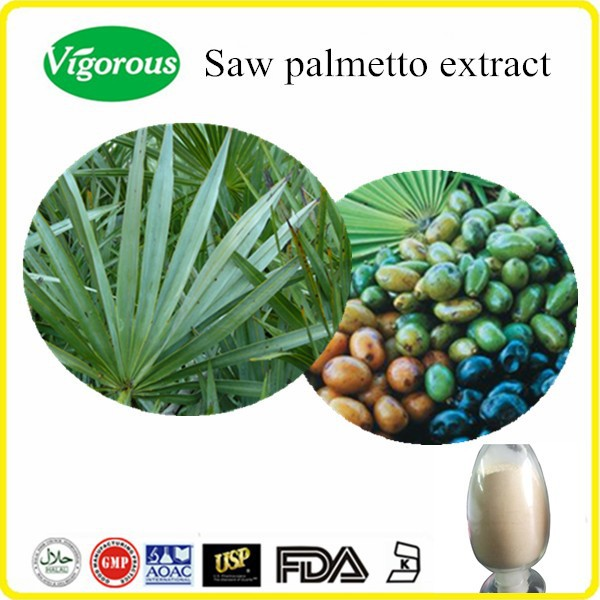 Free sample Saw palmetto extract/Saw palmetto extract powder/Serenoa repens powder