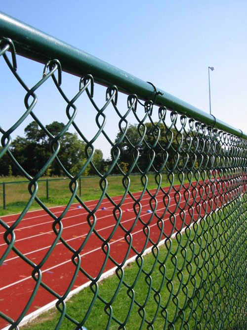 chain link fence(10 Years Factory)