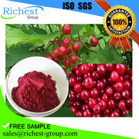 2016 best sell Cranberry fruit extract