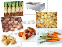 beet washer machine radish washer machine