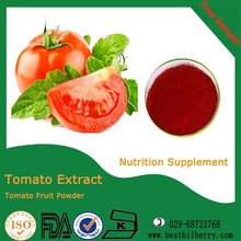 Pure and natural spray dried tomato powder sweet bulk dried tomatoes
