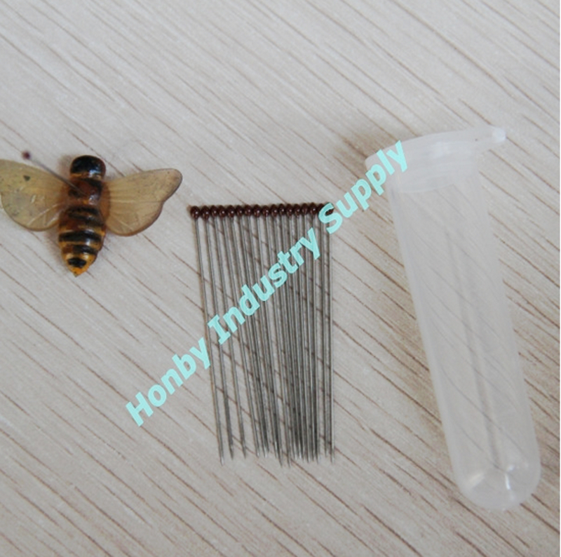 Stainless Steel Entomology Insect Straight Pin For Collection or Lab Supply